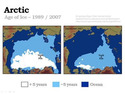 This image shows the decline in mature ice cover (old ice vs. young ice)