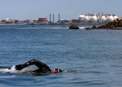 Swain swims through toxic waters