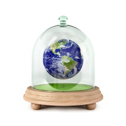 Global business leaders plan for a sustainable earth economy