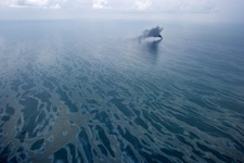Does oil linger on the Gulf's sea floor in the aftermath of the BP oil spill?