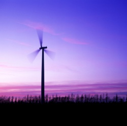Wind energy saw the largest growth in 2010